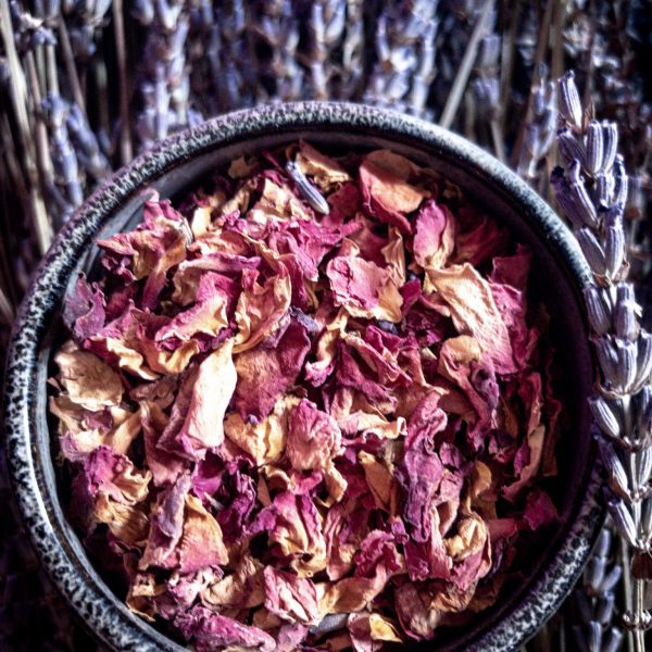 Recipe for Making Rose Face Toner at Home