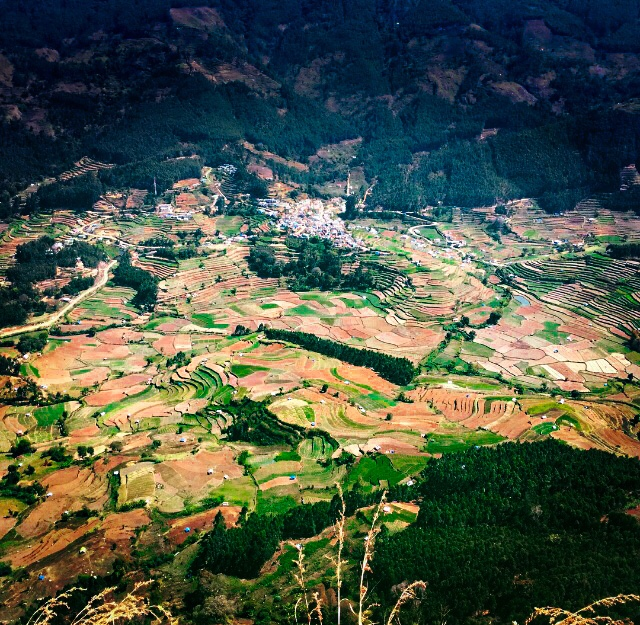 View of the village & the fields from top of a mountain